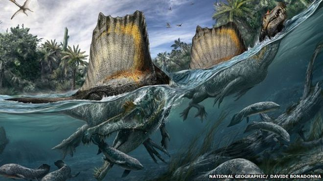 _77498610_spinosaurus_ngm_102014_superjaws_108to110