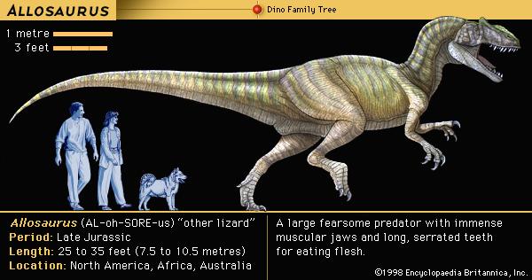 Dinosaurs CD Project odinosr016a4 600 by 316 pixels EB Art Graphics Department Paulina JimŽnez, 12th of June, 1997