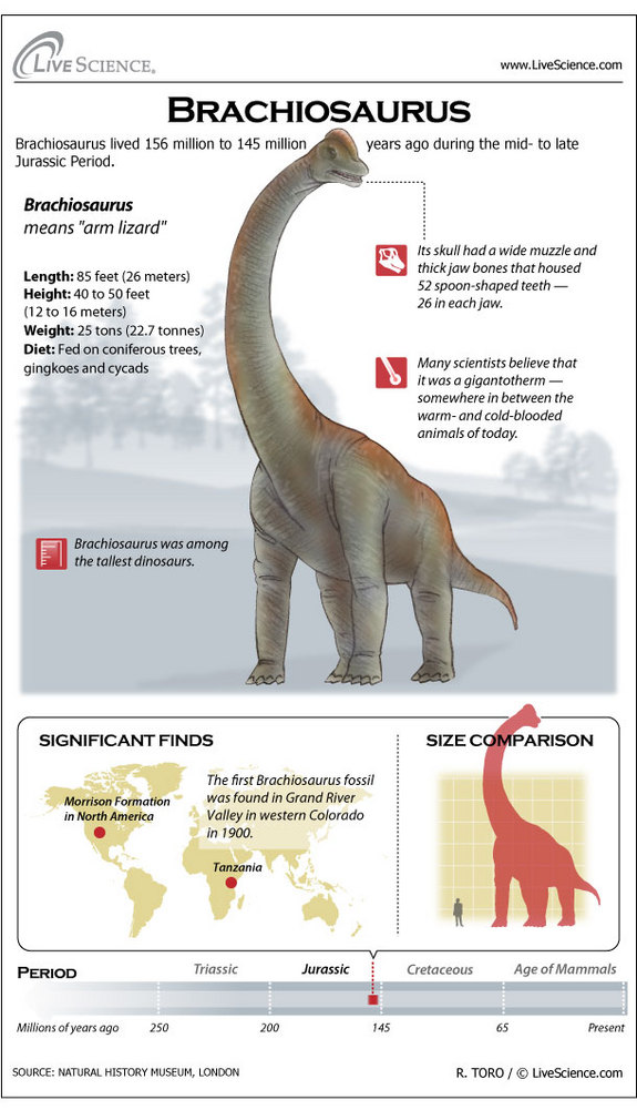 brachiosaurus121127