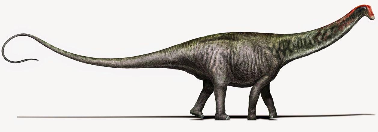 brontosaurus-illustration